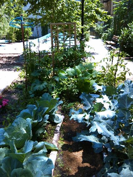Neje Bailey's Garden