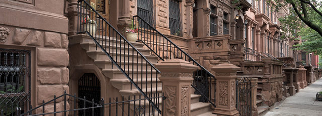 Unhealthy Exposure: Mold in New York City Homes