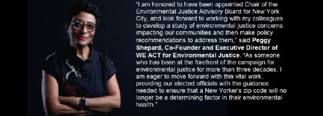 Peggy Shepard Named Chair of the Environmental Justice Advisory Board by New York City Mayor – February 20, 2020