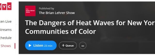 Sonal Jessel Talks About Extreme Heat with Brian Lehrer – July 28, 2020